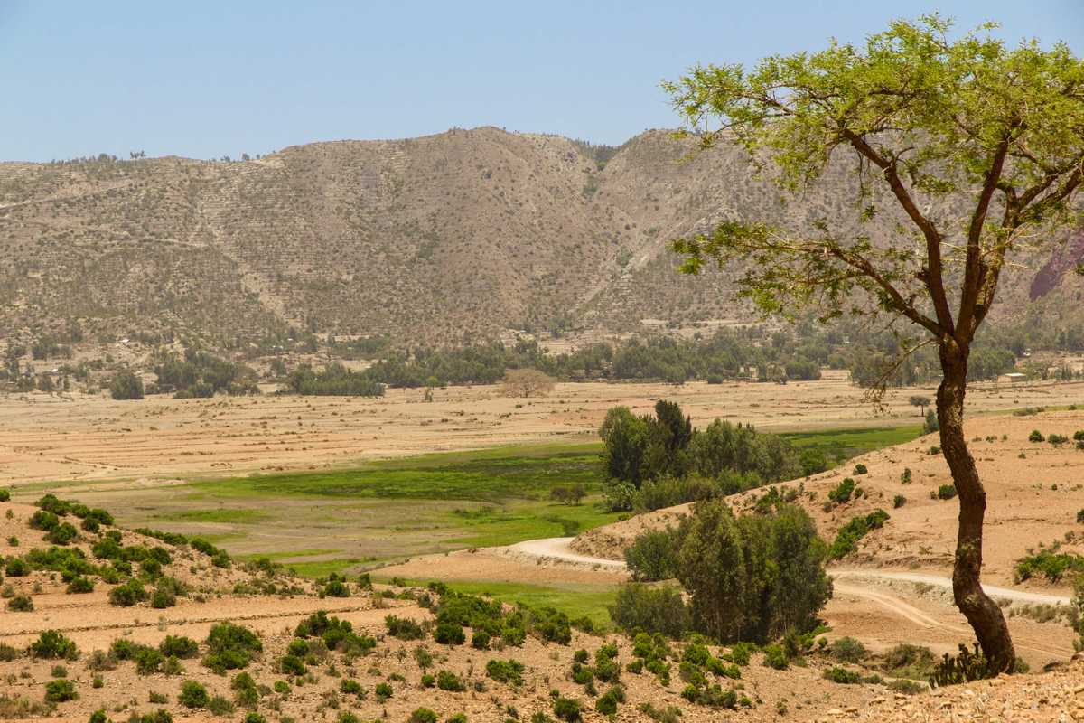 Ethiopia's Green Miracle
